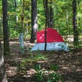 Tent campers.- Bull Run Campground