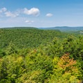 View from the fire tower.- Pawtuckaway State Park