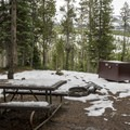 One of the nicer campsites in Lewis Lake Campground.- Lewis Lake Campground