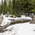 There is a large walk-in camping area.- Lewis Lake Campground