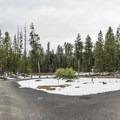 Walk-in camping loop.- Lewis Lake Campground
