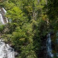The two forks of Anna Ruby Falls.- Anna Ruby Falls