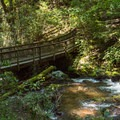 Bridge across the creek below the falls.- Anna Ruby Falls