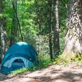 Tent camping at Unicoi State Park.- Unicoi State Park Campground