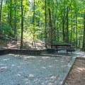 Tent pads give ample room for one or two tents.- Unicoi State Park Campground