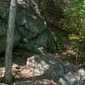 Boulder garden along Coosa Backcountry Trail.- Bear Hair Gap Trail