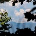 Through the trees you can glimpse Brasstown Bald, the highest point in Georgia.- Bear Hair Gap Trail