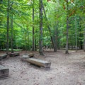 Benches used for ranger presentations and group activities. - Prince William Forest Park