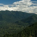 View of the valley and Mount Hood.- Huckleberry Mountain via Boulder Ridge