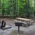 A typical campsite at Oak Ridge Campground.- Oak Ridge Campground CoA