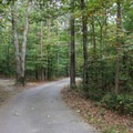 The one-way campground road is narrow and can get tight in places. - Oak Ridge Campground CoA