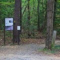 The Farm to Forest Trailhead is located directly at the campground.- Oak Ridge Campground CoA