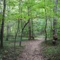South Valley Trail.- Oak Ridge Campground CoA