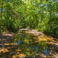 Further east on the same trail.- St. Francois State Park Campgrounds