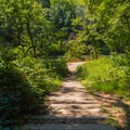 Path leading from the picnic area to the swimming area.- St. Francois State Park Campgrounds
