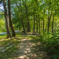 Picnic area near the swimming area.- St. Francois State Park Campgrounds