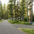 River Point is laid out along a single-loop road.- River Point Campground