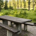 A campsite along the Clearwater River.- River Point Campground