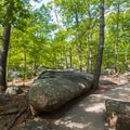 An 18-foot boulder on the path.- Elephant Rocks State Park