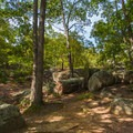A small clearing along the trail.- Elephant Rocks State Park