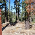 The Echo Lakes hike is along the Pacific Crest Trail.- Echo Lakes Trail