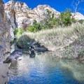 A deep pocket in the creek.- Death Hollow Backpacking Loop
