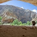 A large alcove with petroglyphs on the Escalante.- Death Hollow Backpacking Loop