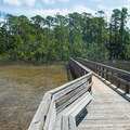 Boardwalk at the beginning of the trail.- Sandpiper Loop Nature Trail