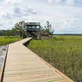 The observation tower and boardwalk give the best marsh views on the trail .- Big Ferry Loop + Observation Tower