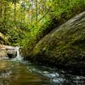 Poe Creek.- Natural Bridge Trail