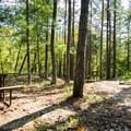 A picnic area at the park.- Long Shoals Roadside Park