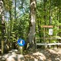 Creek access.- Long Shoals Roadside Park