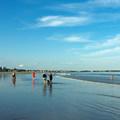 Pine Point Beach.- Pine Point Beach