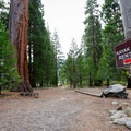 Signs point the way to the kayak and stand-up paddleboard rental area.- Emerald Bay Paddle