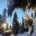 A placid winter scene from Mount Seymour.- Mount Seymour Snowshoe