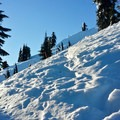 The steepest part of the trail comes after the Elsay Lake junction.- Mount Seymour Snowshoe
