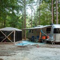 Spacious campsites allow for additional tent setups and car camping.- Croft State Park Campground