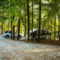 There is room for one car at each campsite.- Croft State Park Campground