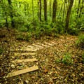Man-made stairs help in the steeper areas.- Nature Trail