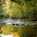 Fairforest Creek.- Nature Trail