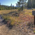 The trail is very well marked, which is nice given all of the forks in the road.- Hermitage Point Loop