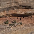 There are several rooms and Kiva here.- Horsecollar Ruins Overlook