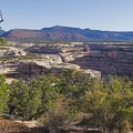 The rugged and beautiful landscape of Natural Bridges- Natural Bridges National Monument
