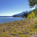 Amazing views from the Hermitage Point Backcountry Group Site.- Hermitage Point Backcountry Group Site