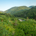 Looking back toward the ridge from tent site.- Fishing Cove Campground