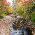 The Great Glen Trails are very scenic. - Great Glen Trails Outdoor Center