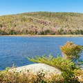 Campsite view on North Pond.- Pillsbury State Park
