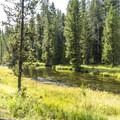 Firehole River.- Lone Star Geyser Hike