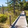 Bridging over a wetland area.- Zealand Falls