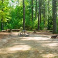 Typical campsite at Bear Brook State Park.- Bear Brook State Park